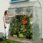 dm folien tomatengew chsh user verschiedene ausf hrungen. Black Bedroom Furniture Sets. Home Design Ideas